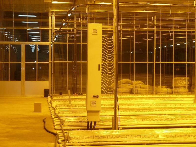 sistema electrico luces asimilacion