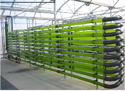 algae greenhouse rufepa