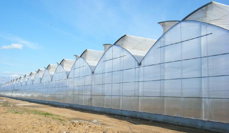 Invernaderos de Plástico