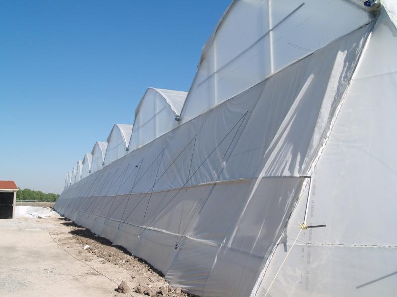 Invernaderos de Plástico Minitunel Tropical
