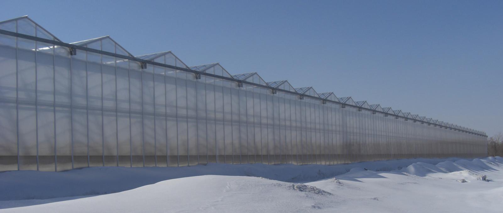 Fabricante de invernaderos rufepa - Invernaderos de cristal ...